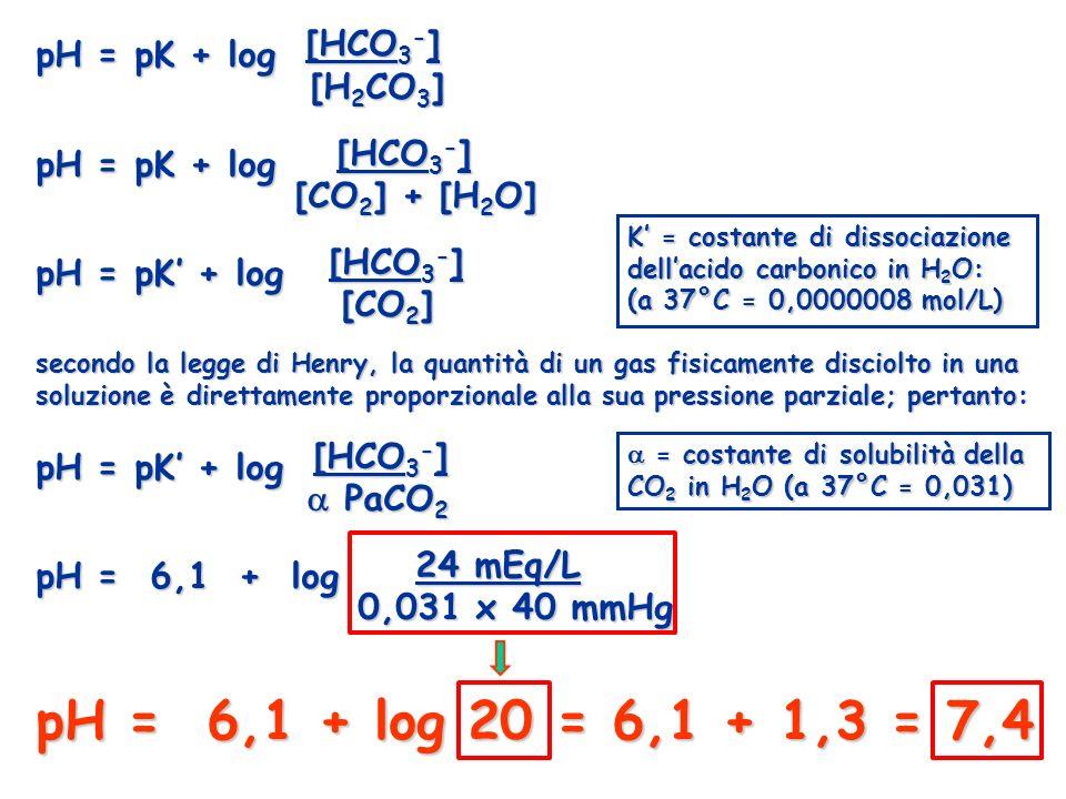 pH = pK + log [HCO3-] pH = pK + log [HCO3-] pH = pK' + log [HCO3-]